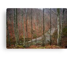 River in the mountains Canvas Print