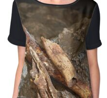 Cave bear fossils closeup Chiffon Top