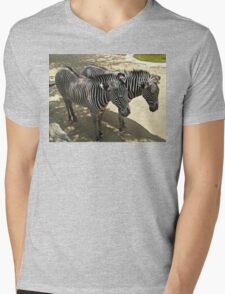 Los Angeles Zoo Zebras Mens V-Neck T-Shirt