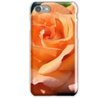 beautiful summer iPhone Case/Skin