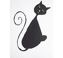 The Unhappy Cat Photographic Print