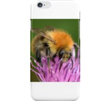 """"""" Pink Thistle Bee """" iPhone Case/Skin"""