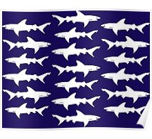 School of Sharks Blue and White Poster