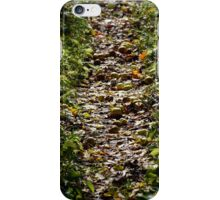 The Straight and Narrow  iPhone Case/Skin