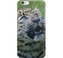 Amur Leopard Cub iPhone Case/Skin