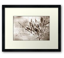 PURPLE FLOWER Framed Print