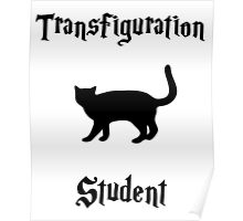 Transfiguration Student- Hogwarts Core Classes Poster