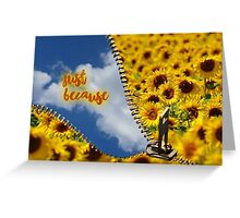 Just because - Sunflowers Zip Greeting Card