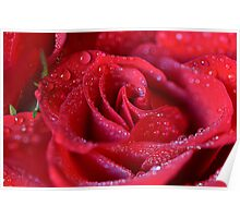 Rote Rosen soll es regnen Poster