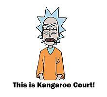 Rick and Morty-- Kangaroo Court Color Photographic Print
