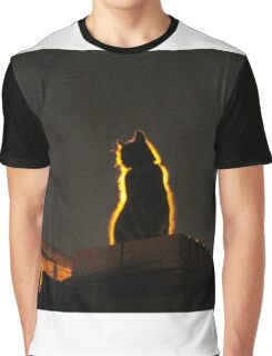 Mystery Cat Graphic T-Shirt