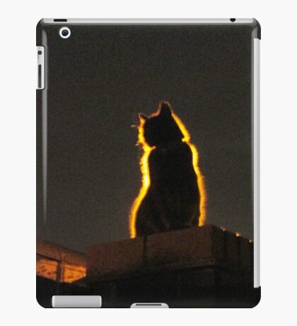 Mystery Cat iPad Case/Skin