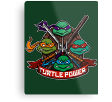 Turtle Power! Metal Print