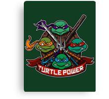 Turtle Power! Canvas Print