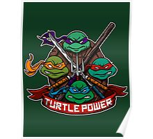 Turtle Power! Poster
