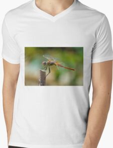 Dragonfly 1 Mens V-Neck T-Shirt