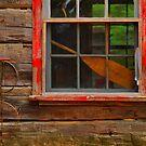 Kitty Lake Ranger Cabin by Dawne Olson