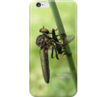 Robber Fly with Lunch iPhone Case/Skin