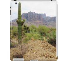 Superstitious Cactus iPad Case/Skin