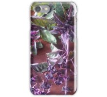 Purple Basil Photograph iPhone Case/Skin