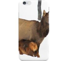 Mother and her offspring. iPhone Case/Skin