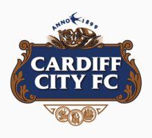 Cardiff City Stella Artois by nosnia