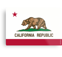California State Flag Metal Print