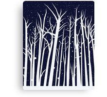 Snowy Winter Night Canvas Print