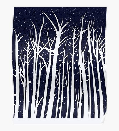 Snowy Winter Night Poster