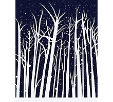 Snowy Winter Night Photographic Print