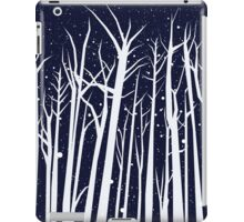 Snowy Winter Night iPad Case/Skin
