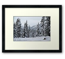 Thinking of Kirkwood Framed Print