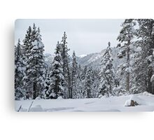Thinking of Kirkwood Metal Print