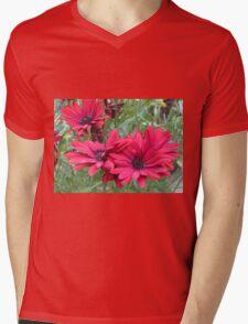 Red Cape Daisy Quartet Mens V-Neck T-Shirt