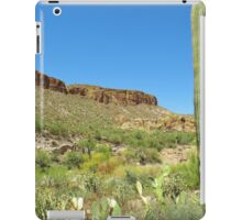 Cactus at Tortilla Flats, Arizona iPad Case/Skin
