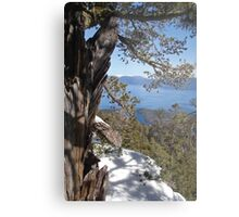View From Maggie's Peaks Metal Print
