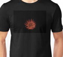 Red and Orange Firework Unisex T-Shirt