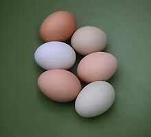half dozen eggs by neovibe
