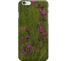 Red Campion in Burntollet Woods iPhone Case/Skin