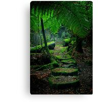 Mother Earth - Tarkine Rainforest Canvas Print