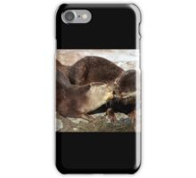 Kissing otters iPhone Case/Skin