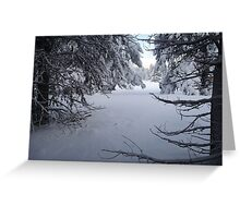 Snowy Tree Tunnel Greeting Card