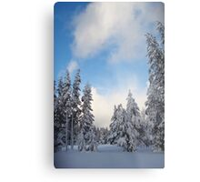 Snow-flocked Trees Metal Print