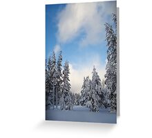 Snow-flocked Trees Greeting Card
