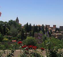 Alhambra in Granada, Spain   by ljm000