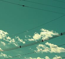 Sometimes the Wires Get Crossed by UrsulaRodgers