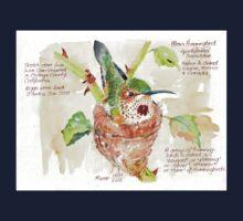 Phoebe, the Allen's Hummingbird - Botanical Kids Tee