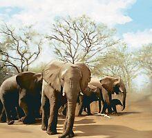 Elephants by mausventura