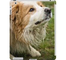 Are you going to throw the ball, or what? iPad Case/Skin