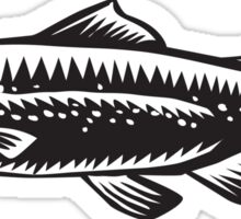 Sea Trout Spotted Woodcut Sticker